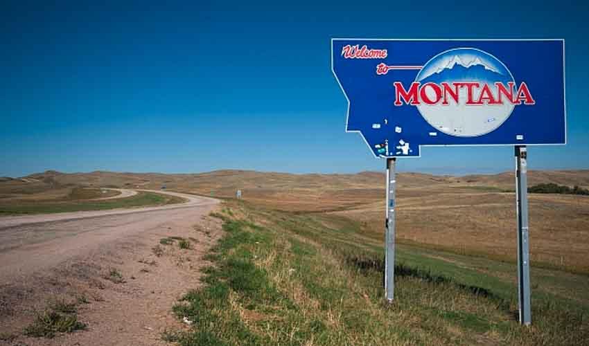 Montana Betting